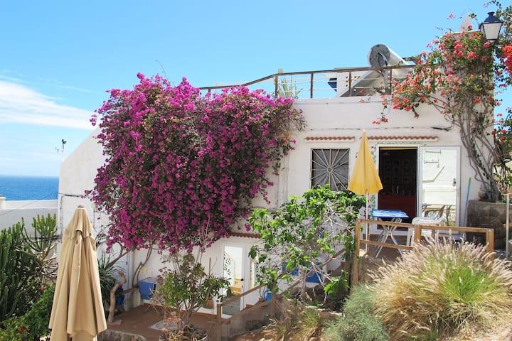 Casa Mariposa (Schmetterling)