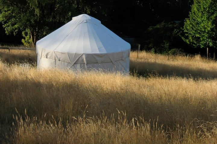 Yurt on the sunny side of the valley