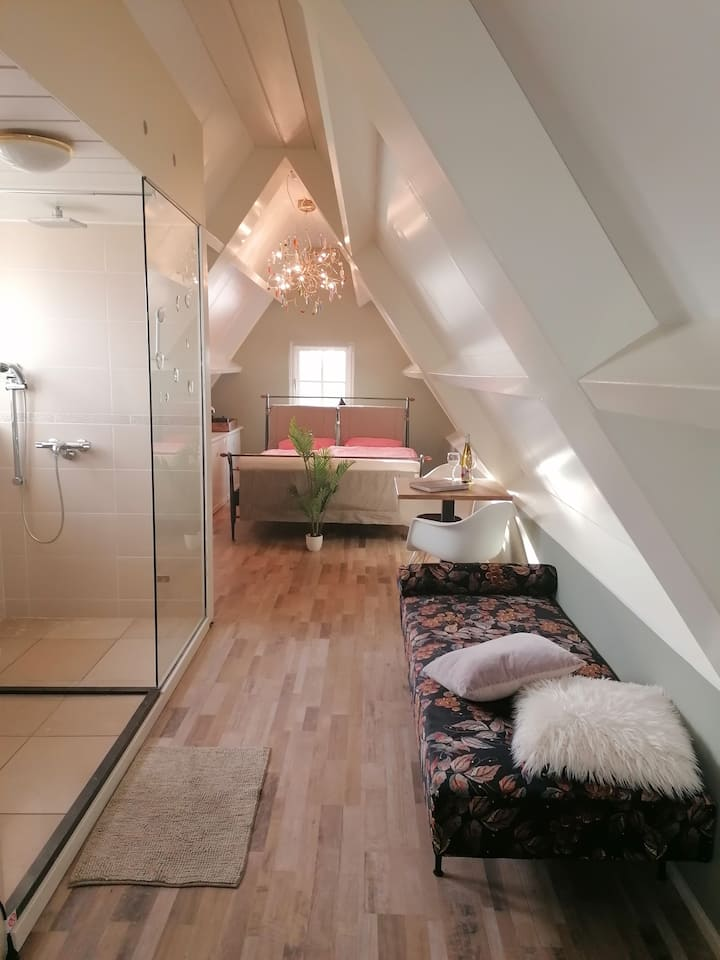 large room with double bed and private bathroom