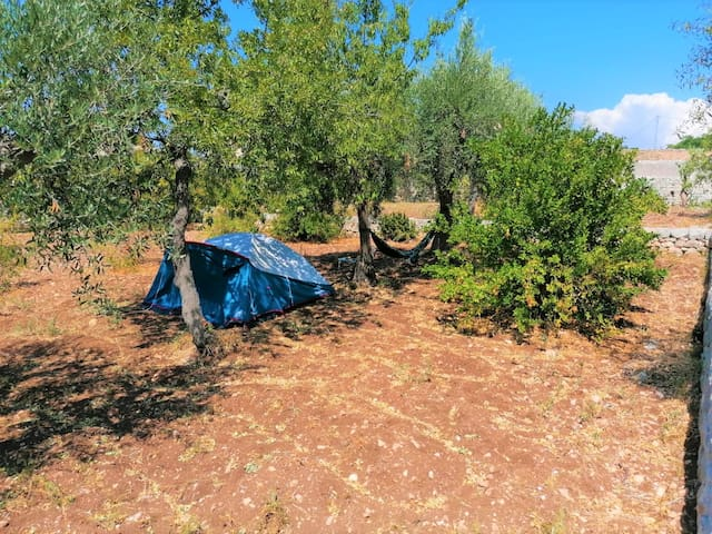 Il Giardino di Kharrub relax  in a camping tent