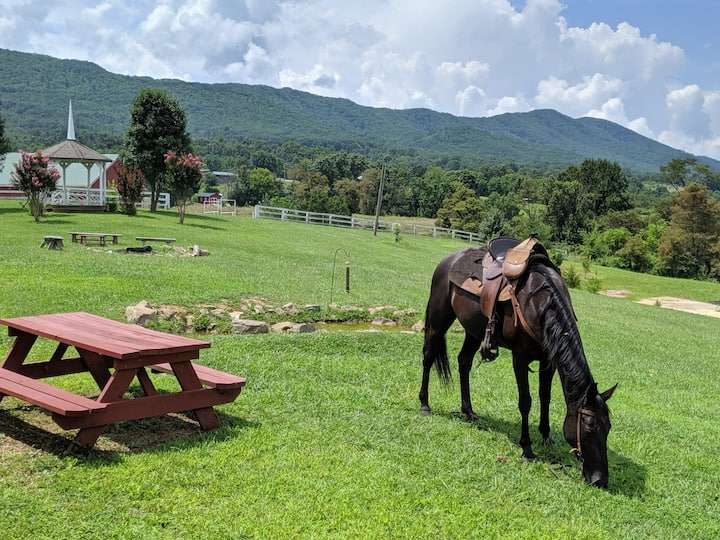 RV Sites with mountain horsetrails