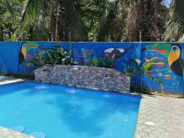 Casa Tui ~ with  Pool: Beautiful Rain Forrest Area