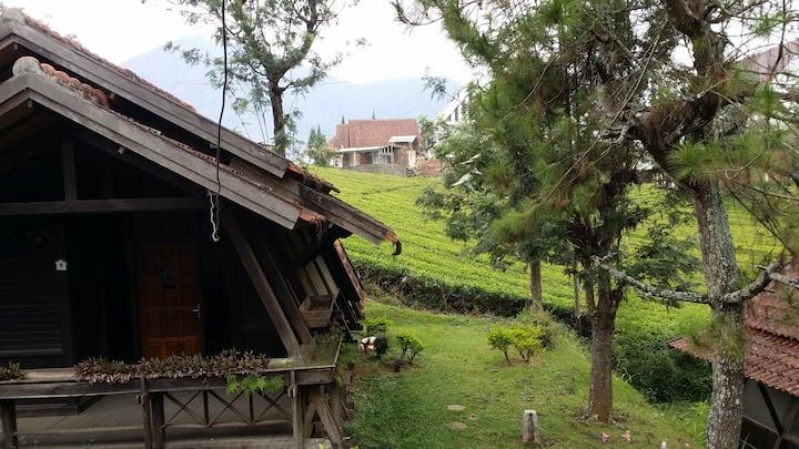 Villa di Kebun Teh - 1 (Argapuri Resort di Jungle)