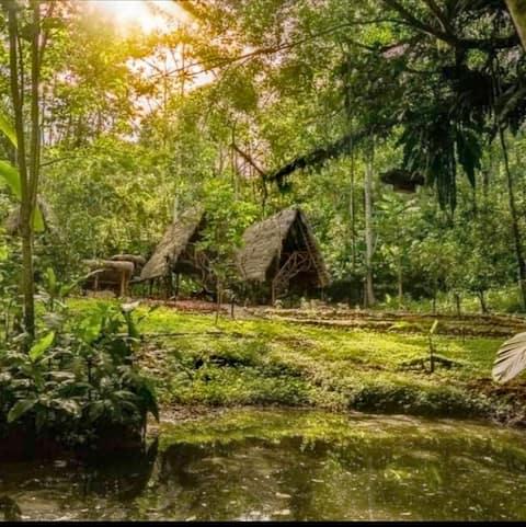 Домик в Магия-Верде