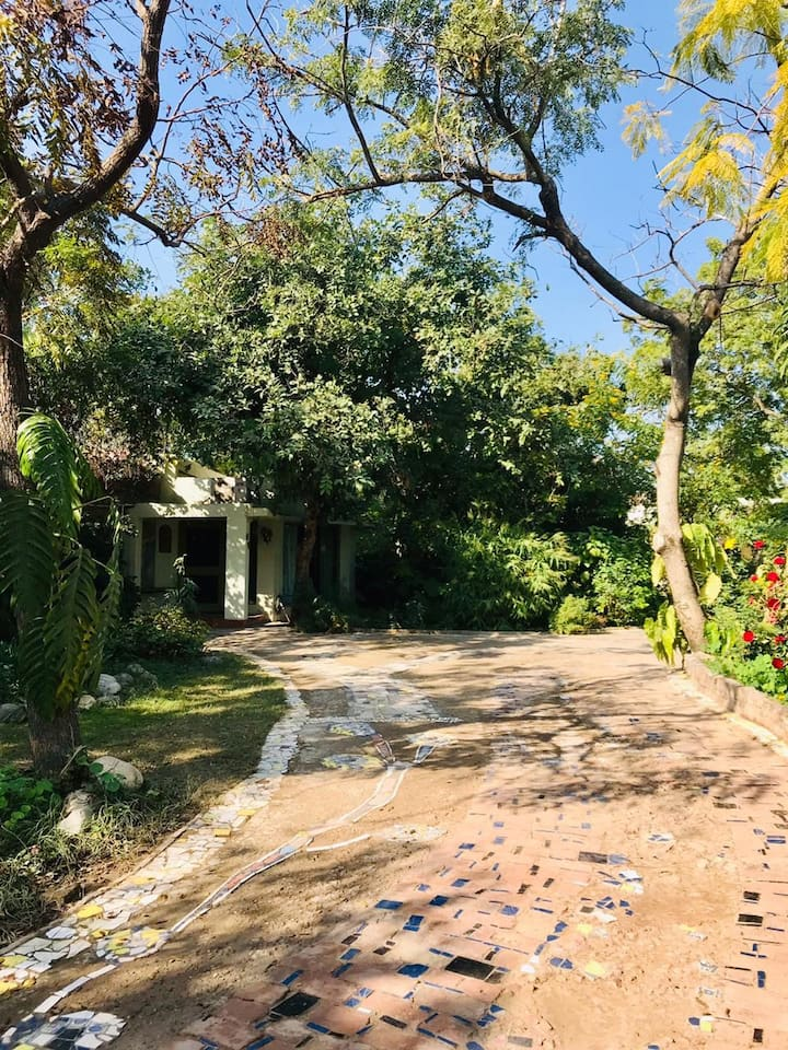 The Laburnum Cottage