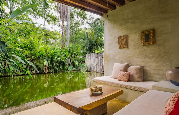 beautiful suite in the dry forest of Comala