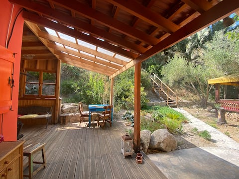 YOUR OASIS   Small wooden house in organic garden.