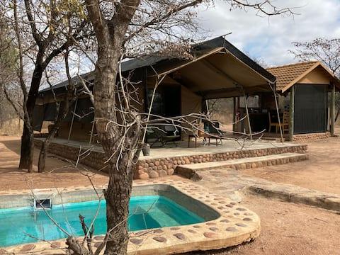 Lady Africa Bush Lodge - Safari Tent
