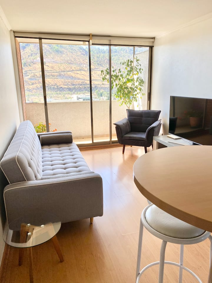 Two bedroom apartment in Providencia
