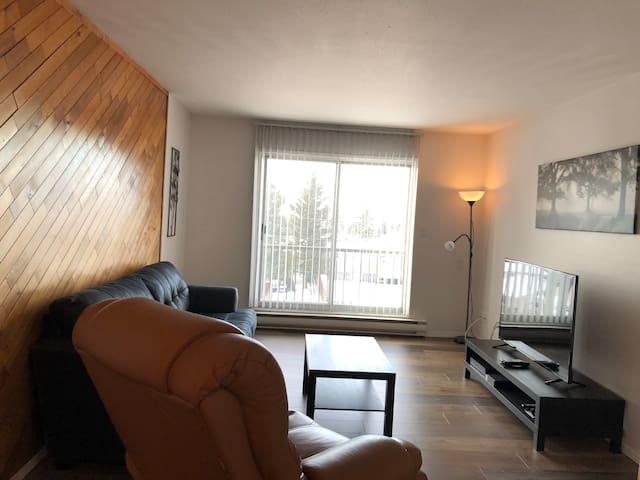 Bright 2 bdrm apartment (A 306)