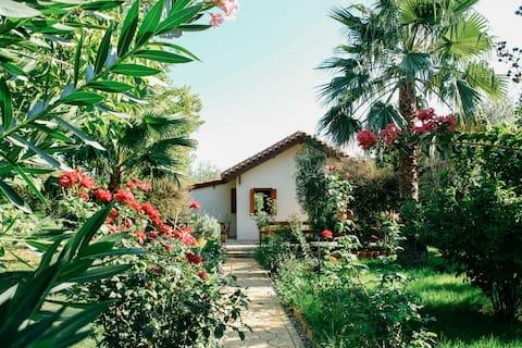 Beautiful Village Bungalow