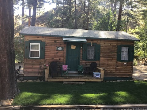 Cabin #5 at the Carson River Resort