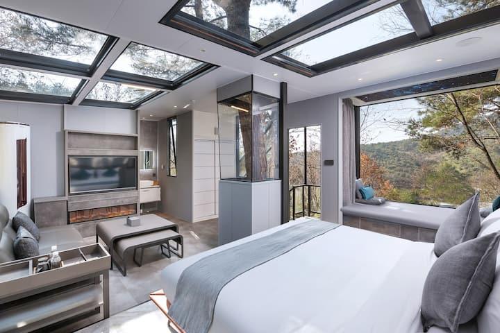 全景玻璃设计 浪漫夜晚 观星树屋 双人房
