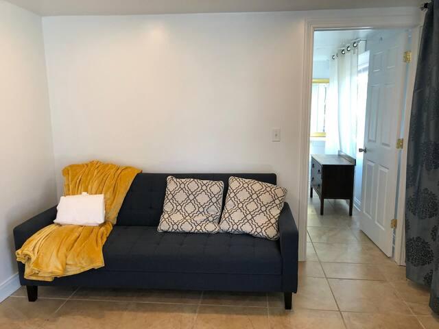 Full-Sized Sleeper Sofa in the Living Room
