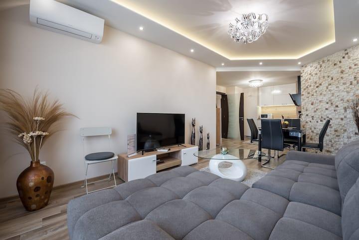 Apartment Cats-Hristo Samsarov