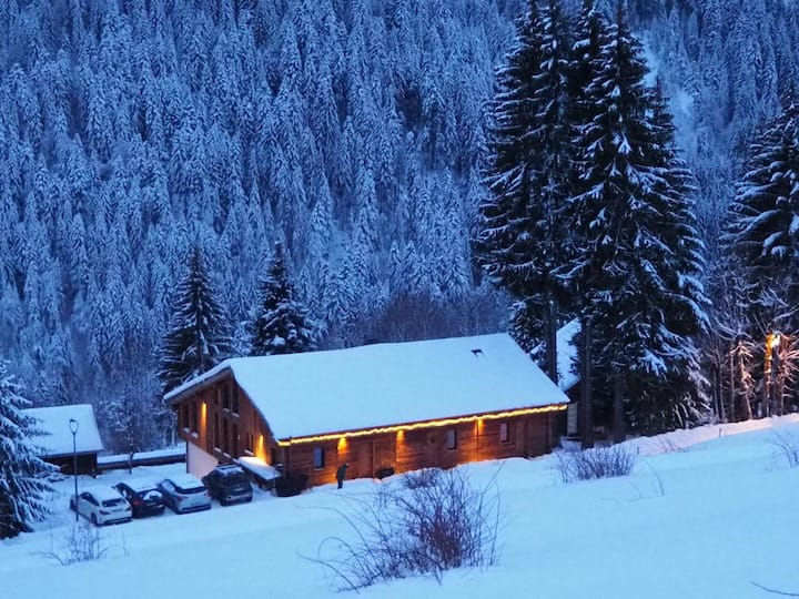 5 star, near Morzine - 4 bed luxury apt for 8