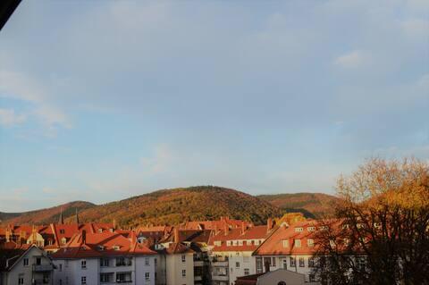 Wohnung in der Heidelberger Weststadt