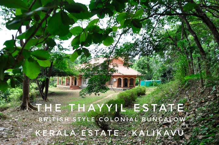 Thayyil Estate, Cottage in the mountains