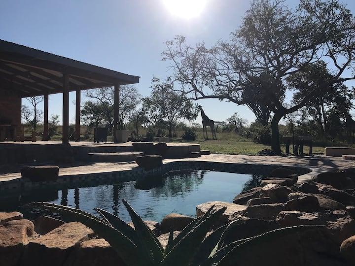 Dombeya Game Reserve- Beautiful Mkhiweni Lodge