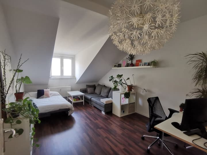 Spacious apartment in the heart of Neukölln