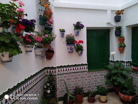 Casa con 3 camere a tema ad Almagro
