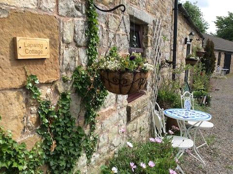Cottage, Scottish Borders, Cozy, Nature Heaven