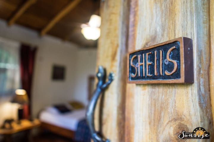 Welcome to the Shells Room.