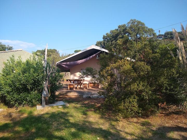 """Tente Safari """"Ruscana"""" avec accès privé à la plage"""