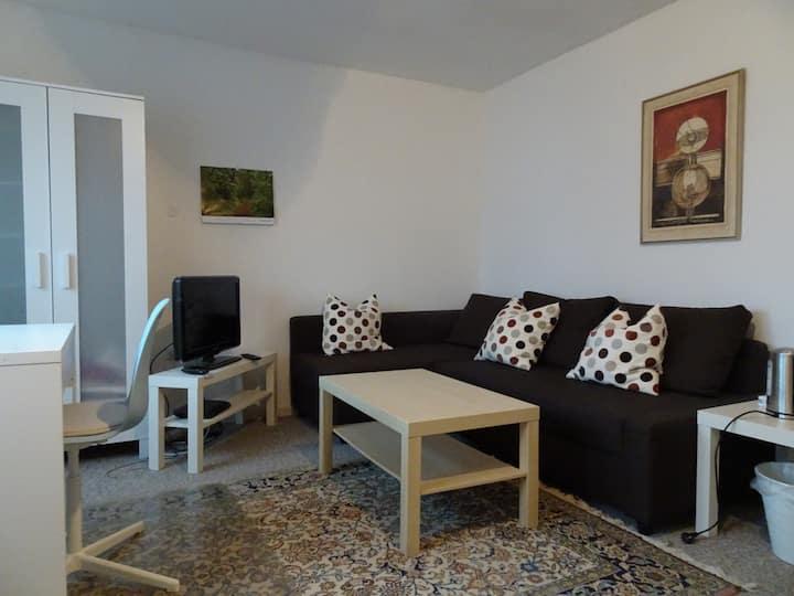 Ruhiges, geräumiges Zimmer nahe Heidelberg