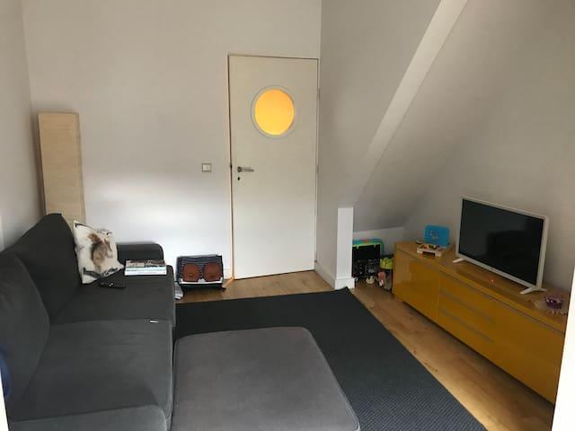 Salon avec canapé-lit double  Living room with sofa-bed