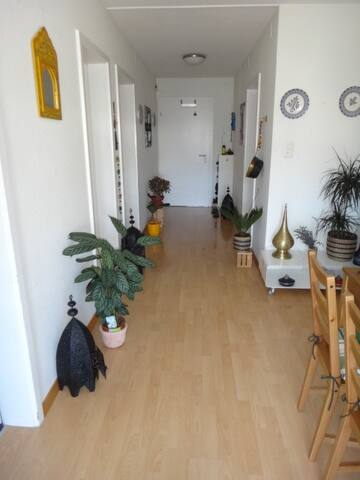 Large apartment with oriental charm 20mn from Bern
