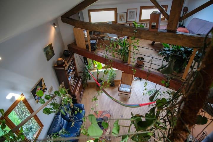 Appartement type Loft, dans une ancienne grange