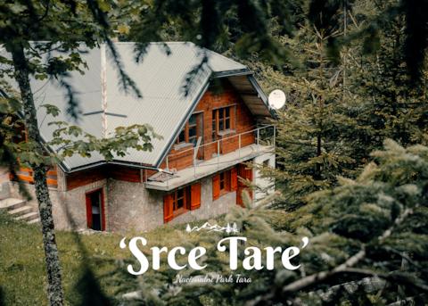 Apartment 'The Heart of Tara' (National Park Tara)