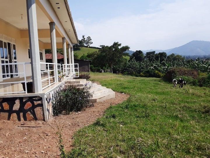 FARM HOUSE NEAR RWENZORI MOUNTAIN KASESE