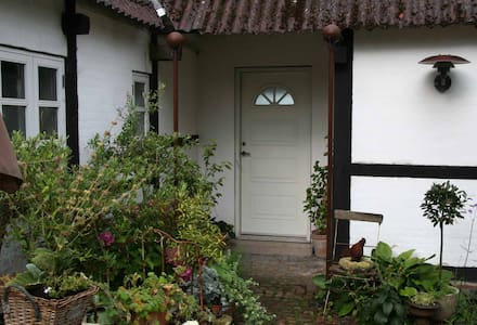 All doors are 85 cm wide - both entrance and inside