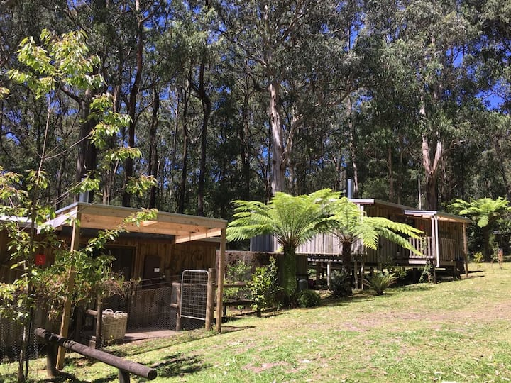 Otways Escape (Barramunga Cabins)