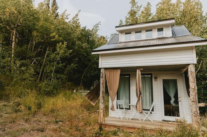 Low Wtr/Pwr Tynee Haus w/ Ladder & rural WiFi
