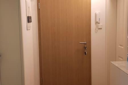 Das ist meine Wohnungstür. Genauere Breite beim offene Tür ist 88,5 cm - bis die  offene Türblatt und gleich nachdem, im Flur vor das Bad, ist 145 cm.