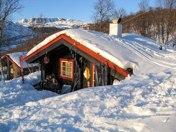 Tyin´s tiny mountain cabin. Ski in/out