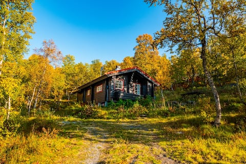Tyin´s tiny mountain cabin. w/ ev-charger