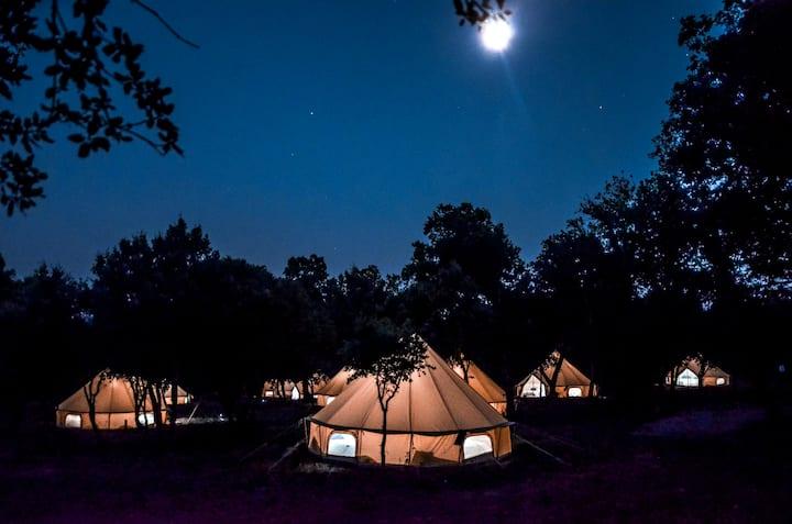 NEW 2021 : Lodge under the stars !