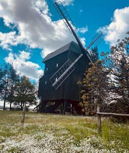 Mühlenerlebnis nahe des Spreewalds