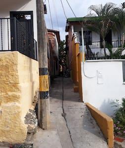 Ingresas por este callejón que es completamente seguro a cualquier hora del día o de la noche...