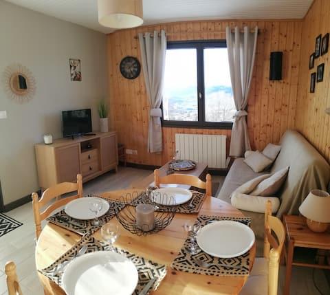 "Rental mountain apartment 1 bedroom apartment ""Le Sorbier"""