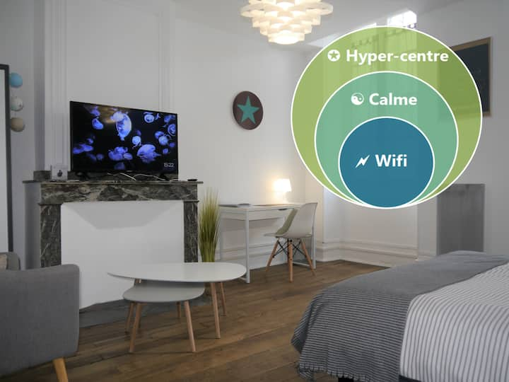 COSY TARBES ★ Nice Flat ★ DOWN TOWN