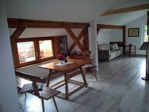 復古感十足的Mansard公寓