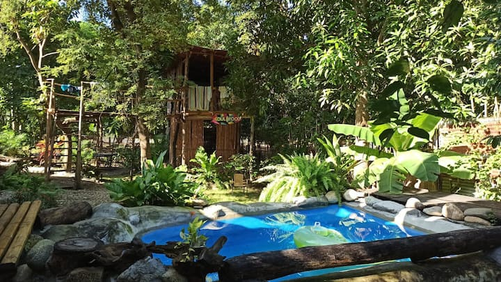 🤩 Tayrona Park 3 - 15 minutes from the Tree House