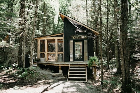 The Eco-Cabin Muskoka