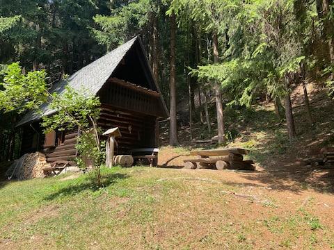 Тихая хижина в лесу