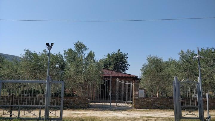 Tenuta G. Mauro - Olive trees and Seaside
